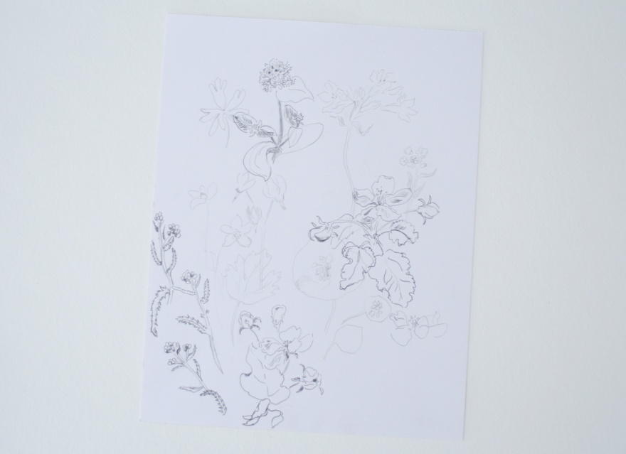 flower drawings 1